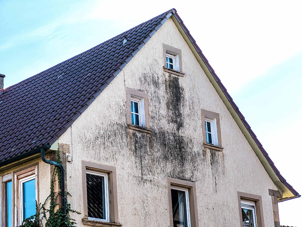 Traitement contre l'humidité de la façade.